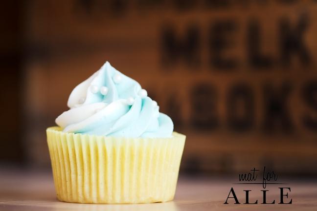 130404_Cupcakes002
